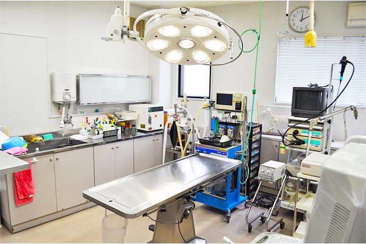 手術の安全性を高めるために各種モニターを利用して、1日平均3~4件ほどの手術や検査、処置を行っています。